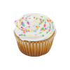 jumbo-vanilla-cupcake